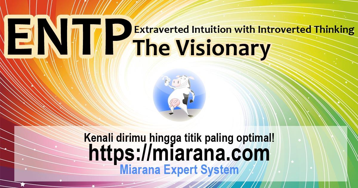 ENTP - Extraverted Intuition with Introverted Thinking - The Visionary