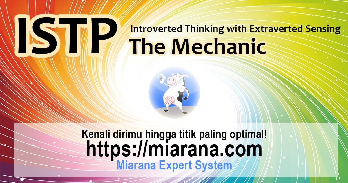 ISTP - Introverted Thinking with Extraverted Sensing - The Mechanic