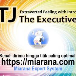 ENTJ - Extraverted Feeling with Introverted Sensing - The Executive