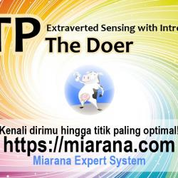 ESTP - Extraverted Sensing with Introverted Thinking - The Doer